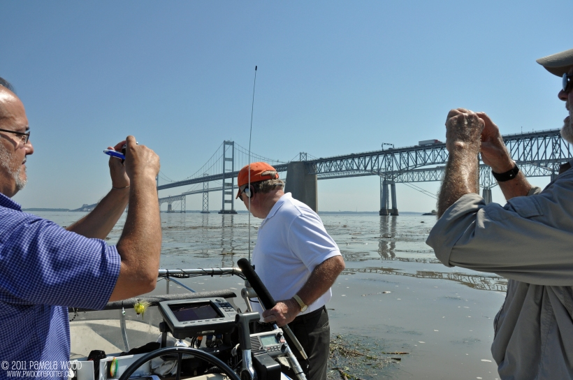 Reporters witnessing Chesapeake Bay debris, photo by multimedia journalist and environment reporter Pamela Wood.