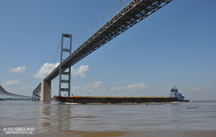 Vessel passes under the Chesapeake Bay Bridge, photo by multimedia journalist and environment reporter Pamela Wood.