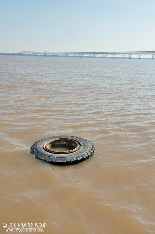 Tire floating near the Chesapeake Bay Bridge, photo by multimedia journalist and environment reporter Pamela Wood.