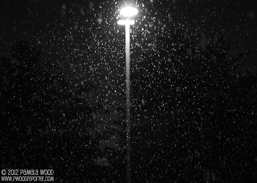 Snow at night, photo by multimedia journalist Pamela Wood.
